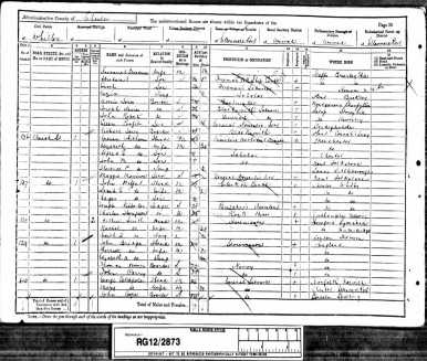 John Mills Whitham 1891 Census